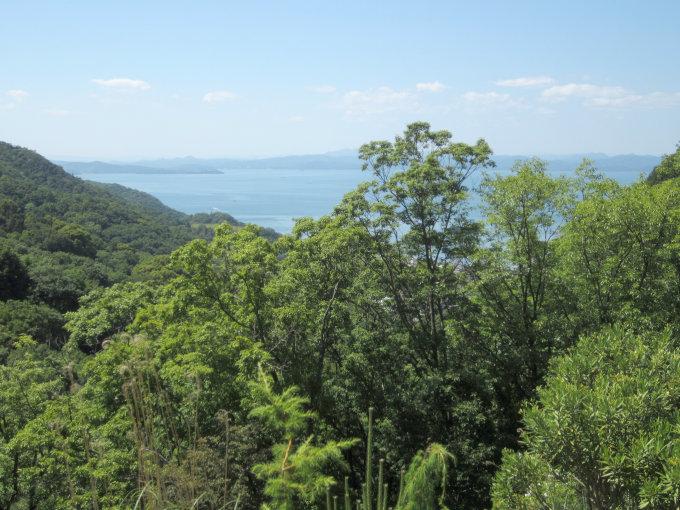 香川県道31号の坂から見た海と森