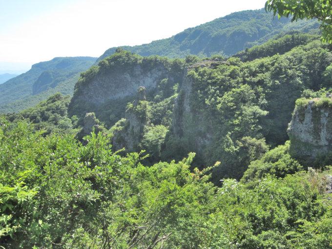 寒霞渓の岩と緑の木々