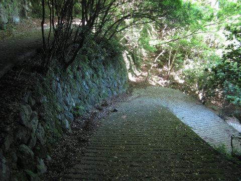表12景遊歩道の暗い道