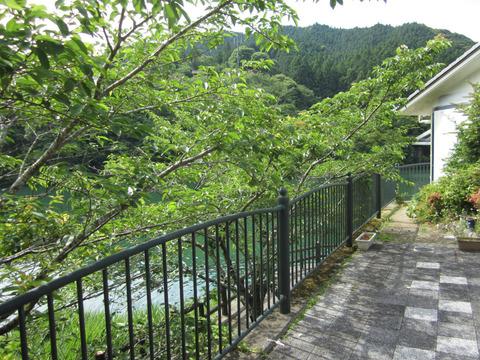 道の駅もみじ川温泉の風景1