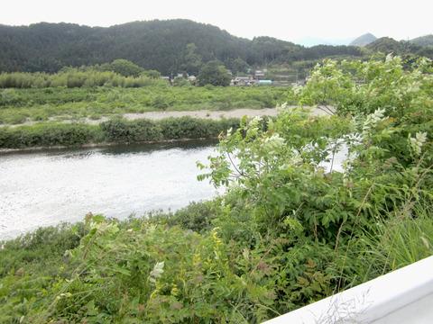 国道156号長良川沿い2