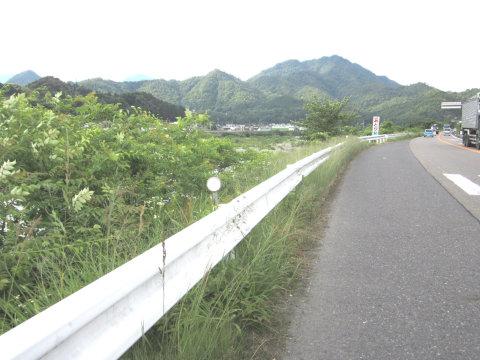 国道156号長良川沿い1