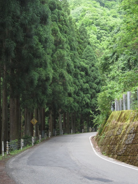 福井県道京都府道1号_府県境近くの狭い道